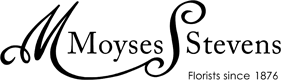 moyses-logo.png